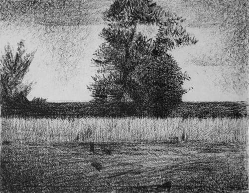 "1881 Сёра Ж.П.""Дерево."""